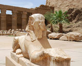 Statue is similar to the statue of the Sphinx — Stock Photo