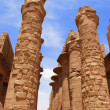 Columns of Karnak Temple, Egypt, Luxor — Stock Photo