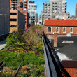 The High Line Park in New York City — Stock Photo