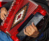 Accordion Player — Stock Photo