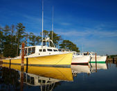 Oyster Boats — Stock Photo