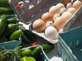 Fresh Brown Organic Eggs — Stock Photo