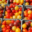 Small Heirloom Tomatoes — Stock Photo