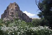 Ihlara valley in Cappadocia — Stock Photo