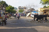 Street in Jaipur, India. — Stock Photo