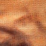 Vintage crocodile skin — Stock Photo #10726005