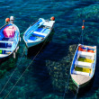 Three Boats Anchored near Riomaggiore in Cinque Terre, Italy — Stock Photo #10161275