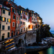 Village of Riomaggiore in Cinque Terre Illuminated at Night, Ita — Stock Photo #10161858