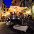 Stock Photo: Illuminated Street of Riomaggiore in Cinque Terre at Night, Ital