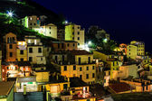 Aerial View on Illuminated Village of Riomaggiore at Night, Cin — Stock Photo