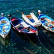 Three Boats Anchored near Riomaggiore in Cinque Terre, Italy — Stock Photo #10491453