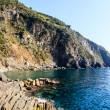 Cliffs and Mediterranean Sea in Cinque Terre, Italy - Stockfoto