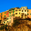 Village of Manarolon Steep Cliff in Cinque Terre, Italy — Stok Fotoğraf #10491687