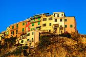 Byn av Manarola på den branta klippan i Cinque Terre, Italien — Stockfoto
