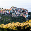 Stock Photo: Medieval Village of Cornigliat Morning, Cinque Terre, Ital
