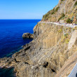 Постер, плакат: Love Road between Manarola and Riomaggiore in Cinque Terre Ital