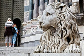 Lion Guarding Cathedral of Saint Lawrence (Lorenzo) in Genoa, It — Stock Photo