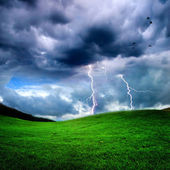 Green field — Stockfoto