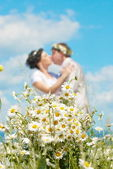 Bouquet of daisies — Stockfoto