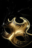 Ornate carnival mask — Stock Photo