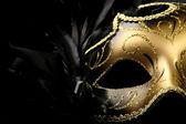 Ornate carnival mask — Stock Photo