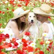 Happy young couple playing with dog on a meadow — Stock Photo
