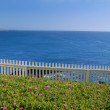 Coastal Views — Stock Photo #8832243