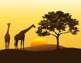 Girafe sihouette — Vecteur