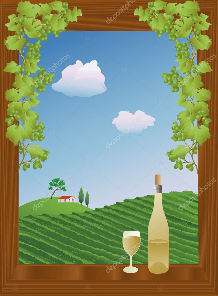 Window with a view of a vineyard in summer, with wine on the windowsill  Stock Vector #8830957