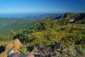 Mountain views — Stock Photo
