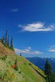 Vue sur la montagne — Photo