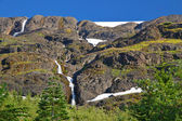 Cascades in the Cascades — Stock Photo