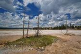 Yellowstone Geyser — Stock Photo