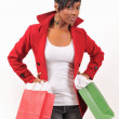 Lady Shopping — Stock Photo #8887020