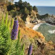 Stock Photo: Big Sur Waterfall