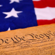US Constitution — Stock Photo