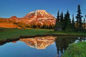 Mt. Rainier reflections — Stock Photo