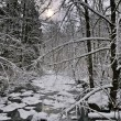 Winter stream — Stockfoto