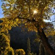 Yosemite in Autumn — Stock Photo