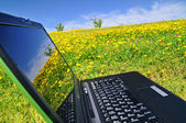 Computer in the field — Foto de Stock