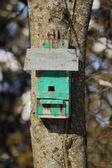 Stare gniazdo dla ptaków — Zdjęcie stockowe