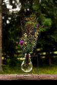 Weird vase with mountain flowers — Stock Photo