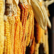 Suspended maize — Stock Photo