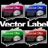 Multicolored glossy label — Stock Vector