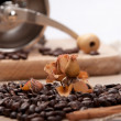 Nice coffee heart maked from arabica — Stock Photo