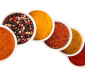 Spices in porcelain plates iaolated on white — Stock Photo