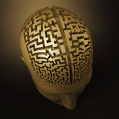 Labyrinth in the human brain — Stock Photo