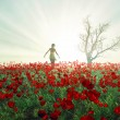 Woman on the poppy field — Foto de Stock