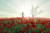Woman on the poppy field — Stock Photo