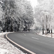 Road through the winter landscape — Stock Photo